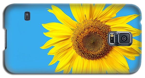 Sunflower Blue Sky Galaxy S5 Case by Edward Fielding