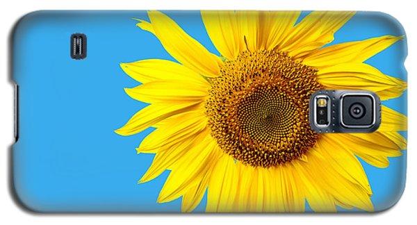 Sunflower Galaxy S5 Case - Sunflower Blue Sky by Edward Fielding