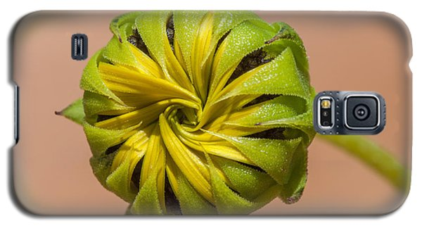 Sunflower Bud Opening Galaxy S5 Case