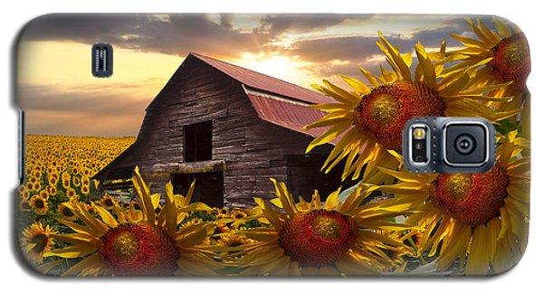Sunflower Dance Galaxy S5 Case by Debra and Dave Vanderlaan