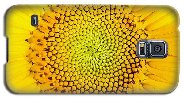 Sunflower  Galaxy S5 Case by Edward Fielding