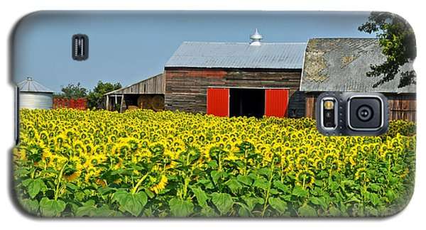 Galaxy S5 Case featuring the photograph Sunflower Farm by Rodney Campbell
