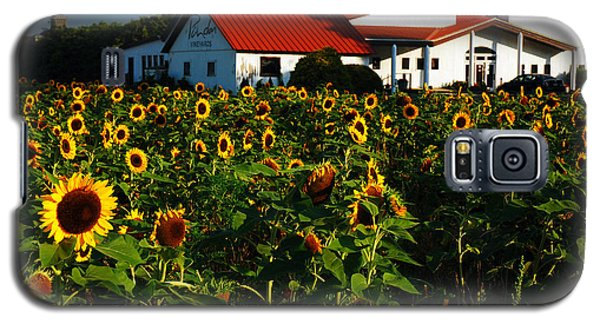 Galaxy S5 Case featuring the photograph Sunflower Field At Winery by James Kirkikis
