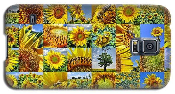 Sunflower Field Collage In Yellow Galaxy S5 Case