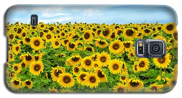 Galaxy S5 Case featuring the photograph Sunflower Field by Mike Ste Marie