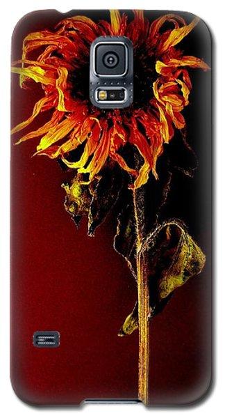 Sunflower Galaxy S5 Case