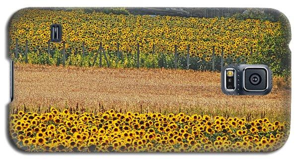 Sunflower Heaven Galaxy S5 Case
