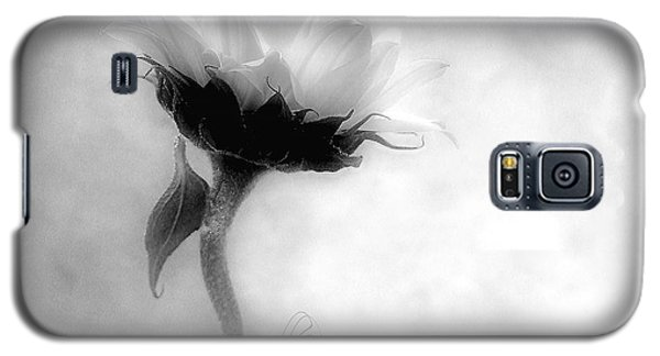 Sunflower In Profile Galaxy S5 Case by Louise Kumpf