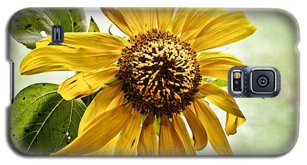 Sunflower In Window Galaxy S5 Case