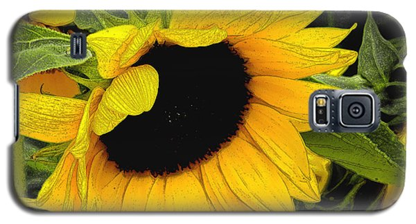 Galaxy S5 Case featuring the photograph Sunflower by James C Thomas