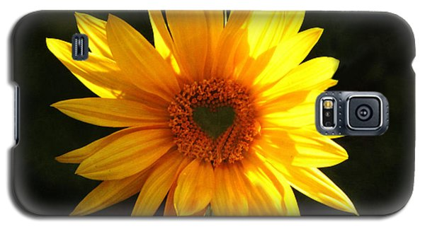 Galaxy S5 Case featuring the photograph Sunflower Love by Marjorie Imbeau