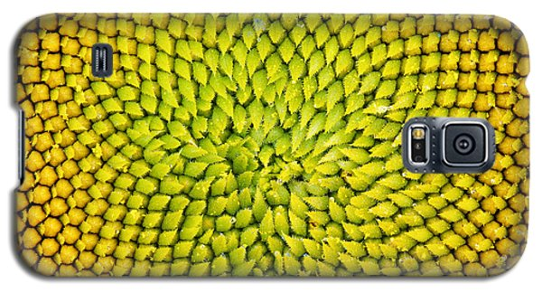 Sunflower Middle  Galaxy S5 Case by Tim Gainey