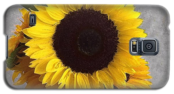 Sunflower Photo With Dry Brush Filter Galaxy S5 Case