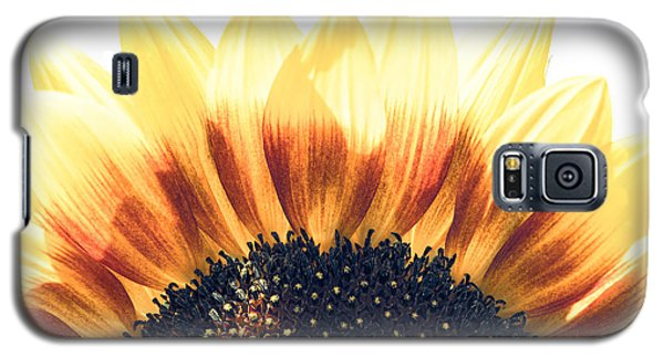 Galaxy S5 Case featuring the photograph Sunflower Rising by Wade Brooks