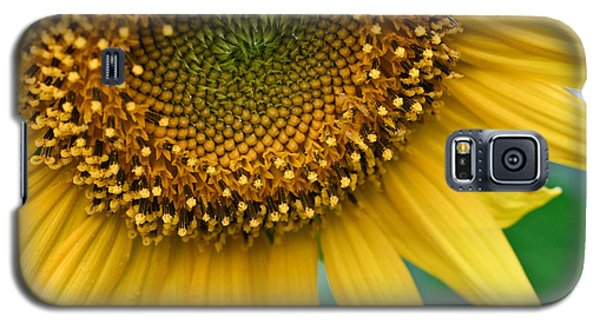 Galaxy S5 Case featuring the photograph Sunflower Smiles by Julie Andel