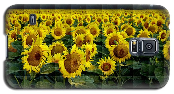 Sunflower Squared Galaxy S5 Case