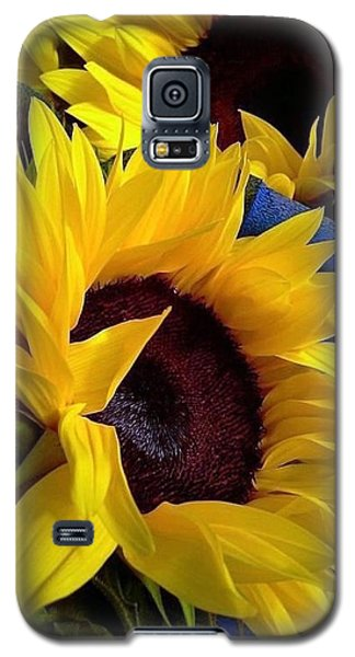 Sunflower Sunny Yellow In New Orleans Louisiana Galaxy S5 Case