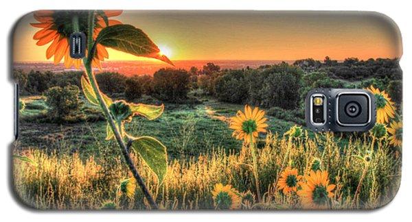 Sunflower Sunrise 1 Galaxy S5 Case by Diane Alexander