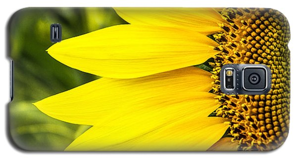 Sunflower Sunshine Galaxy S5 Case