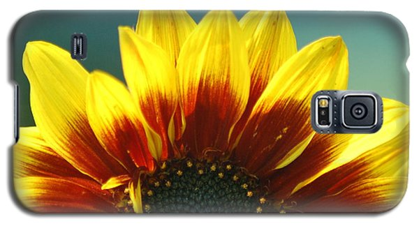 Galaxy S5 Case featuring the photograph Sunflower by Tam Ryan