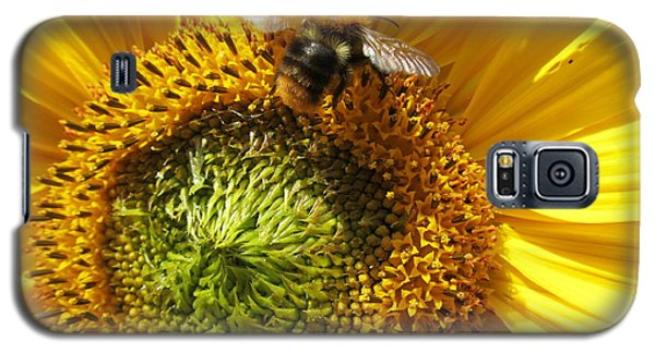 Galaxy S5 Case featuring the photograph Sunflower With Bee by Jeepee Aero