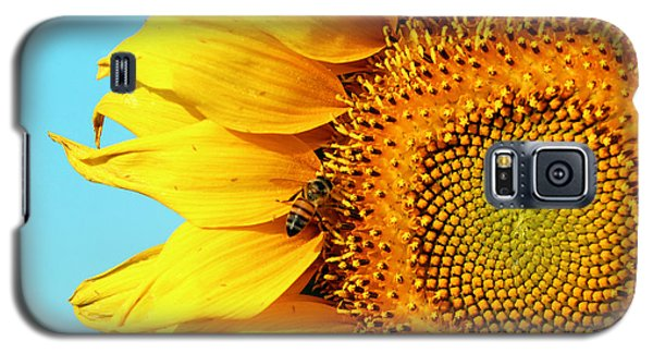Sunflower With Bee - Photo Galaxy S5 Case