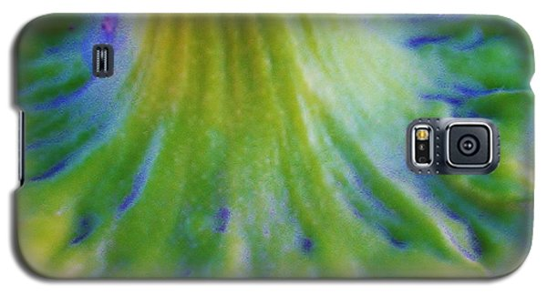 Galaxy S5 Case featuring the photograph Sunflower...moonside 2 by Daniel Thompson