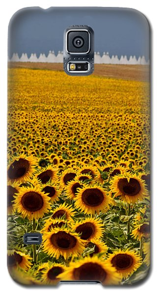Galaxy S5 Case featuring the photograph Sunflowers And Airports by Ronda Kimbrow