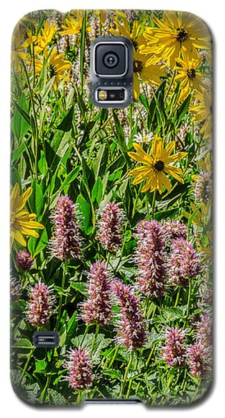 Sunflowers And Horsemint Galaxy S5 Case