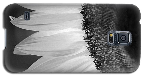 Sunflowers Beauty Black And White Galaxy S5 Case by Sandi OReilly