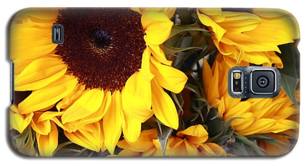 Galaxy S5 Case featuring the photograph Sunflowers by Dora Sofia Caputo Photographic Art and Design