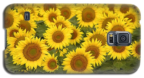 Sunflowers For Mom Galaxy S5 Case