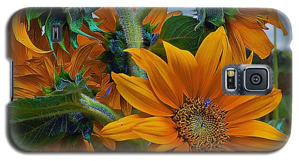 Sunflowers In A Bunch Galaxy S5 Case