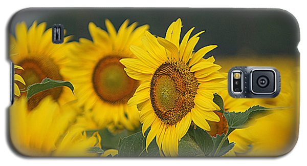 Galaxy S5 Case featuring the photograph Sunflowers by Kathy Churchman