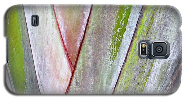 Sunken Gardens Abstract 4 Galaxy S5 Case by Maria Huntley