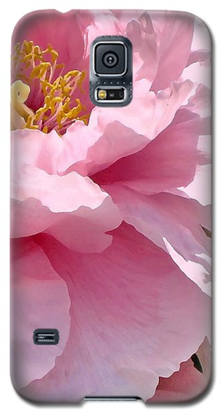 Sunkissed Peonies 1 Galaxy S5 Case