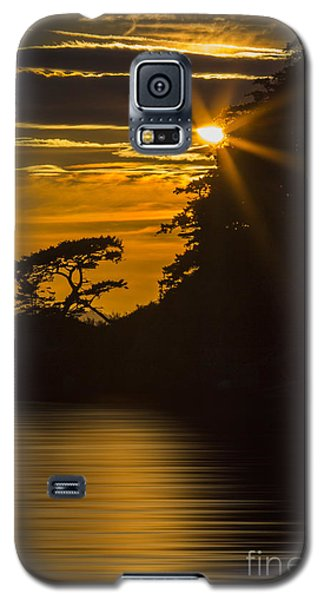 Sunkissed Galaxy S5 Case