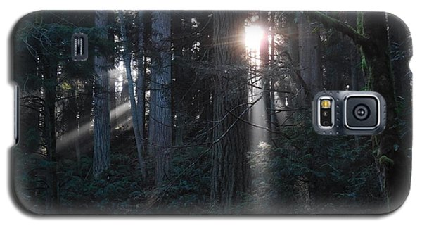 Sunlight In The Forest Galaxy S5 Case by Karen Molenaar Terrell