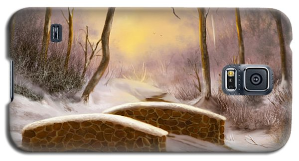 Galaxy S5 Case featuring the painting Sunlight In Winter by Sena Wilson