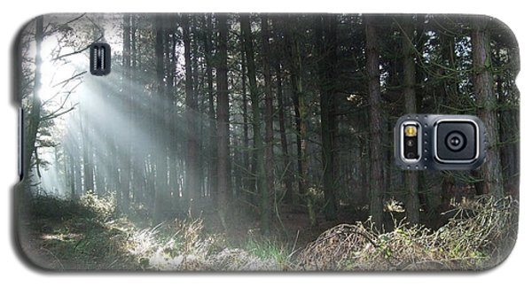Galaxy S5 Case featuring the photograph Sunlight On Cannock Chase by Jean Walker