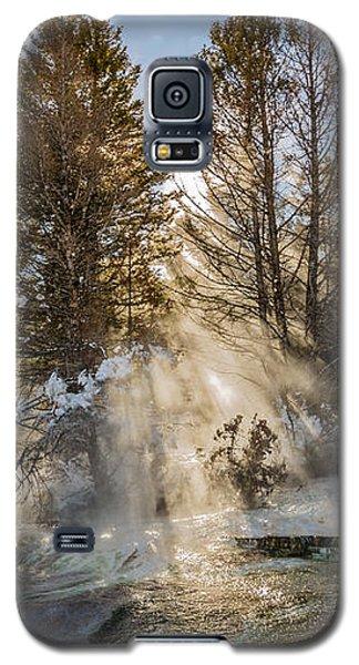 Sunlight Through The Trees Galaxy S5 Case