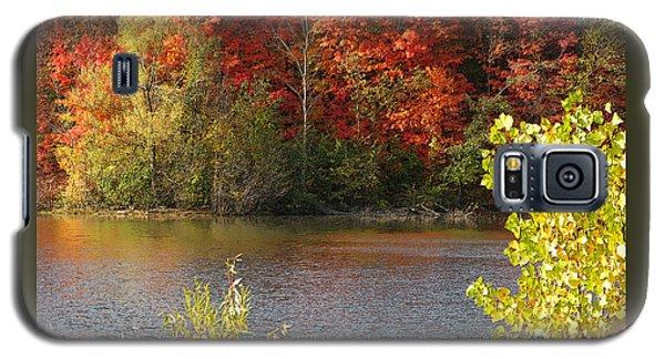 Galaxy S5 Case featuring the photograph Sunlit Autumn by Ann Horn