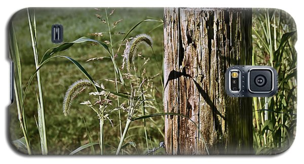 Sunlit Fence Post - 2 Galaxy S5 Case by Greg Jackson