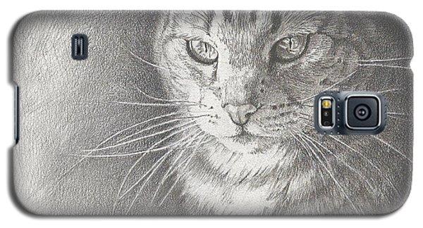 Sunlit Tabby Cat Galaxy S5 Case