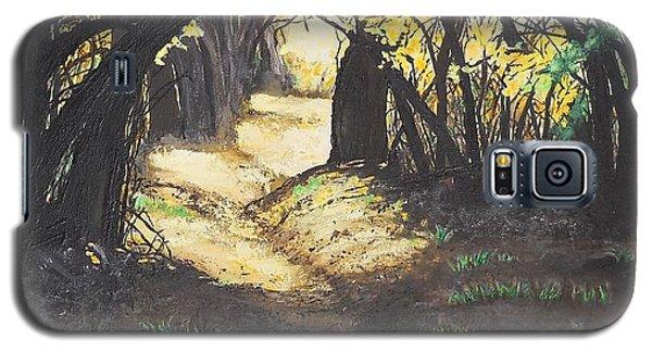 Sunlit Trail Galaxy S5 Case