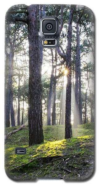 Sunlit Trees Galaxy S5 Case by Spikey Mouse Photography