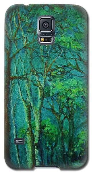Sunlit Woodland Path Galaxy S5 Case