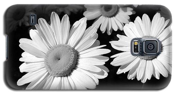 Sunning  Galaxy S5 Case