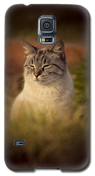 Sunny Days Like These Galaxy S5 Case by Kim Henderson