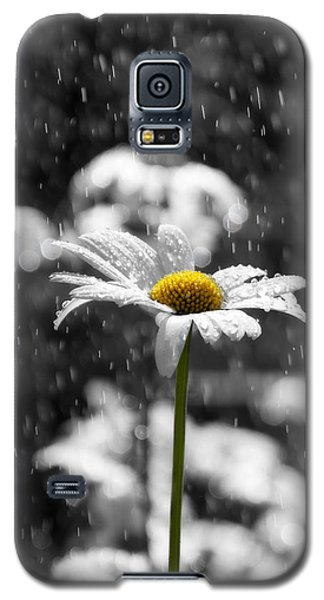 Sunny Disposition Despite Showers Galaxy S5 Case by Lisa Knechtel